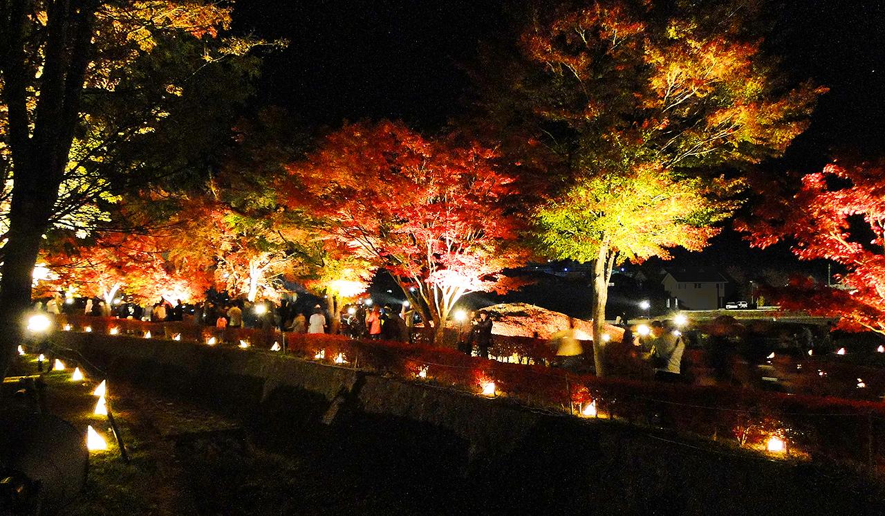 http://moritetsu.info/car/img/DSC01269ss.jpg