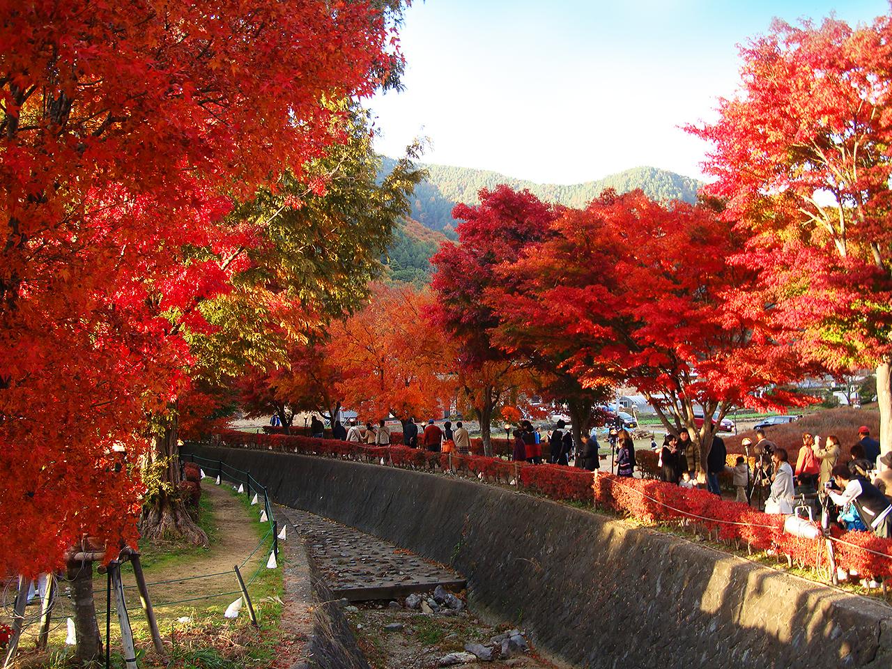http://moritetsu.info/car/img/DSC03313ss.jpg