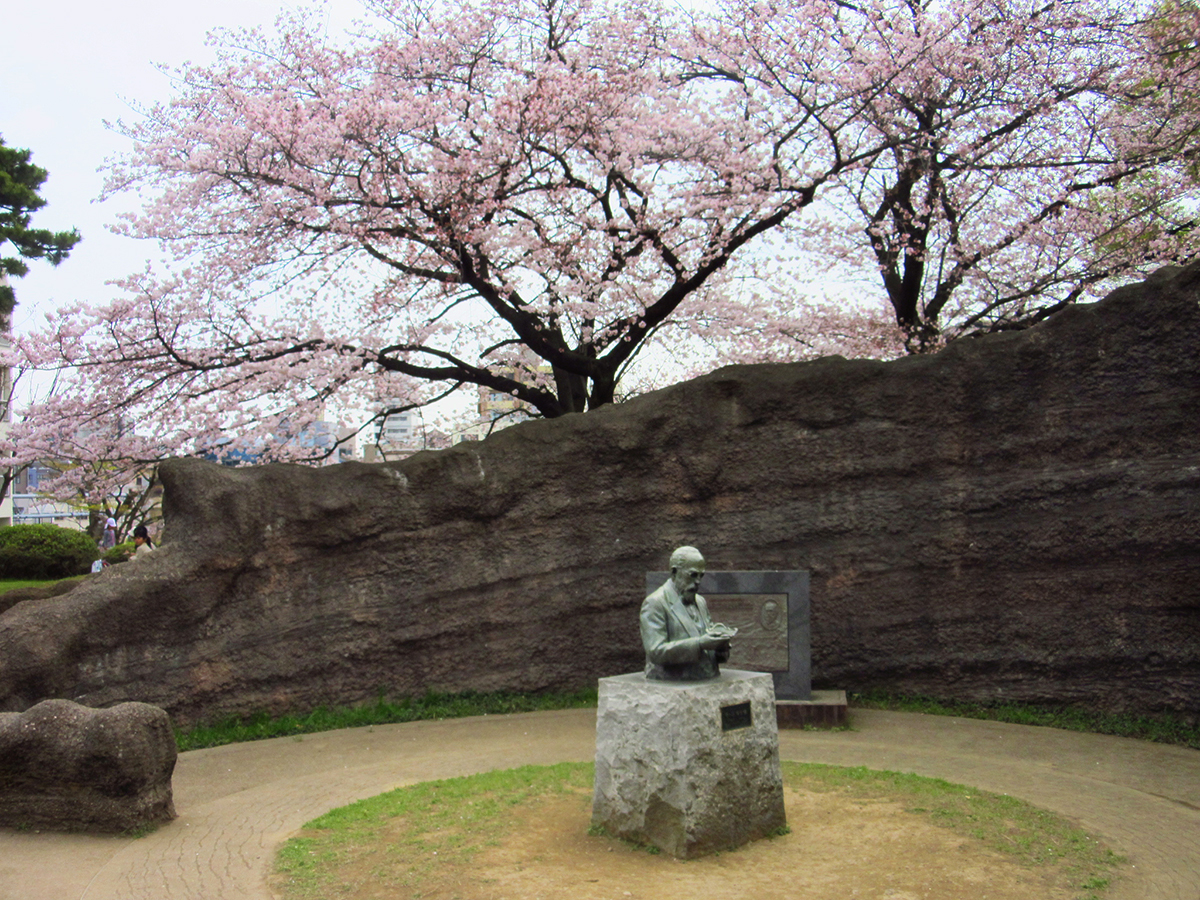 http://moritetsu.info/train/img/IMG_4248sssss-oomori-kaizuka-palk.jpg
