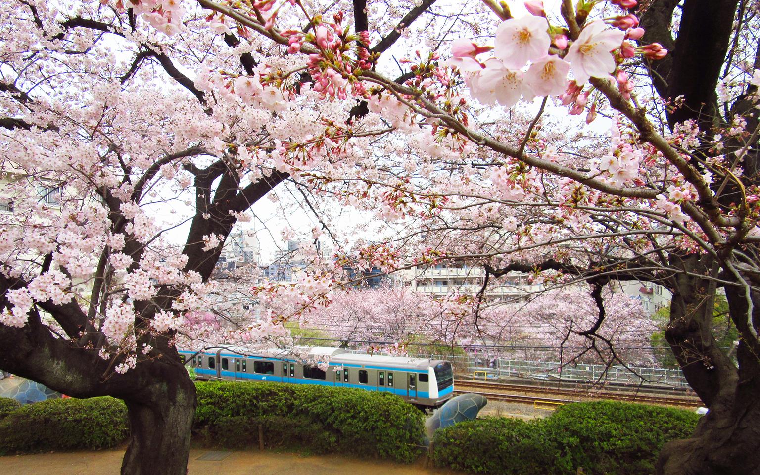 http://moritetsu.info/train/img/IMG_4285sssss-oomori-kaizuka.jpg